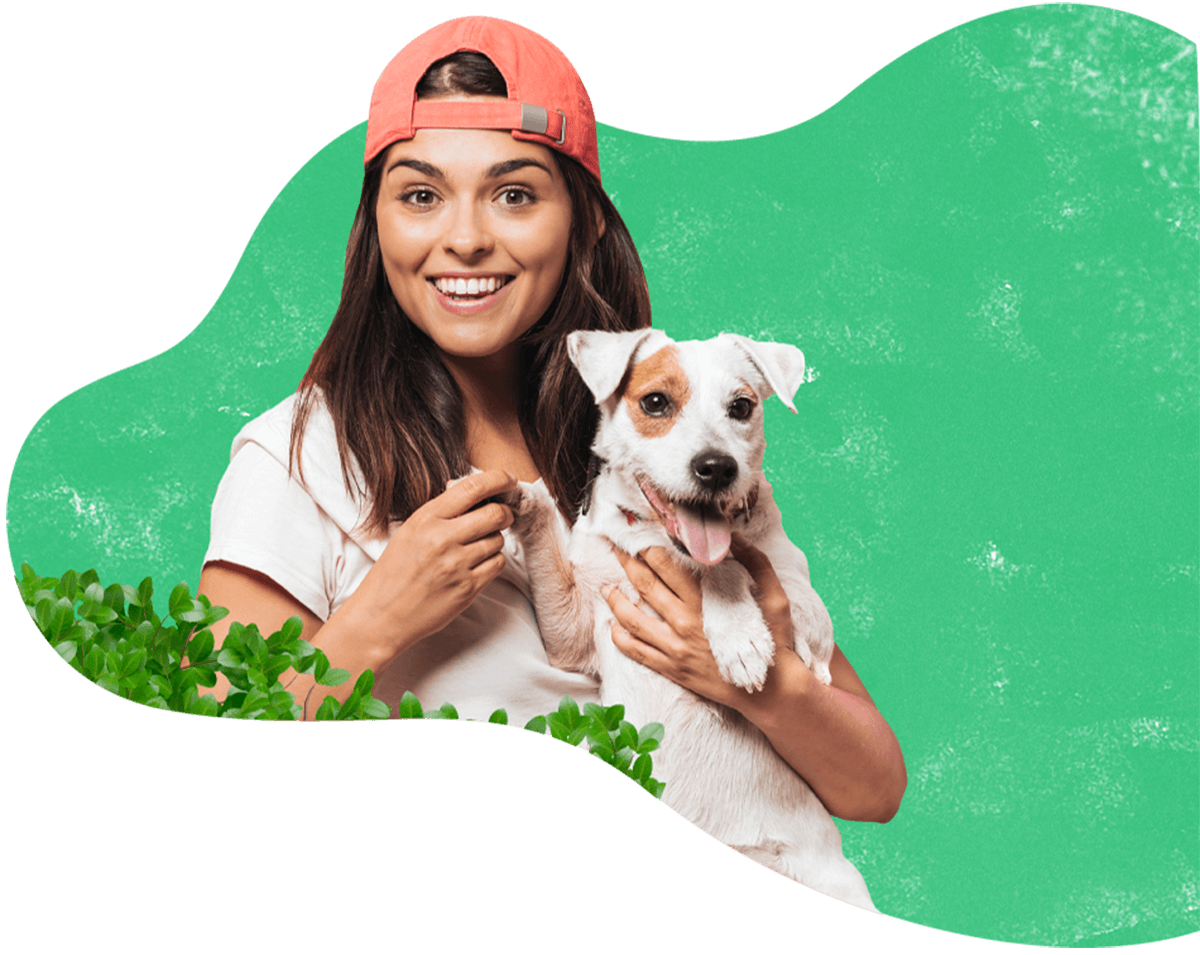 https://adorablebulldogs.com/wp-content/uploads/2019/08/hero_image_13.png